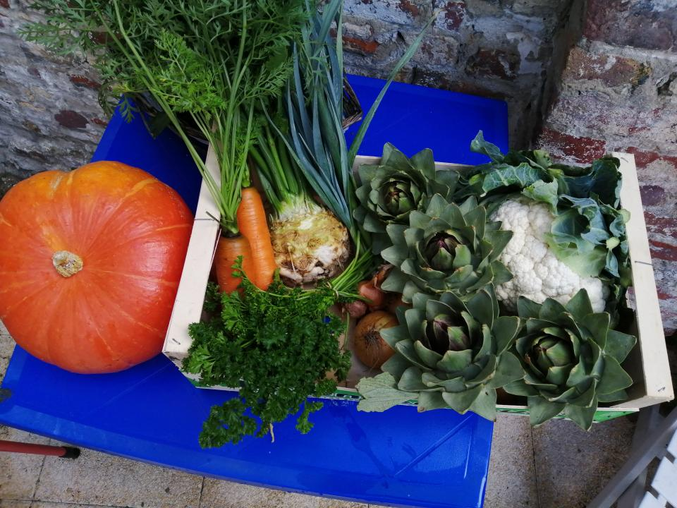 Notre production de légumes de saison
