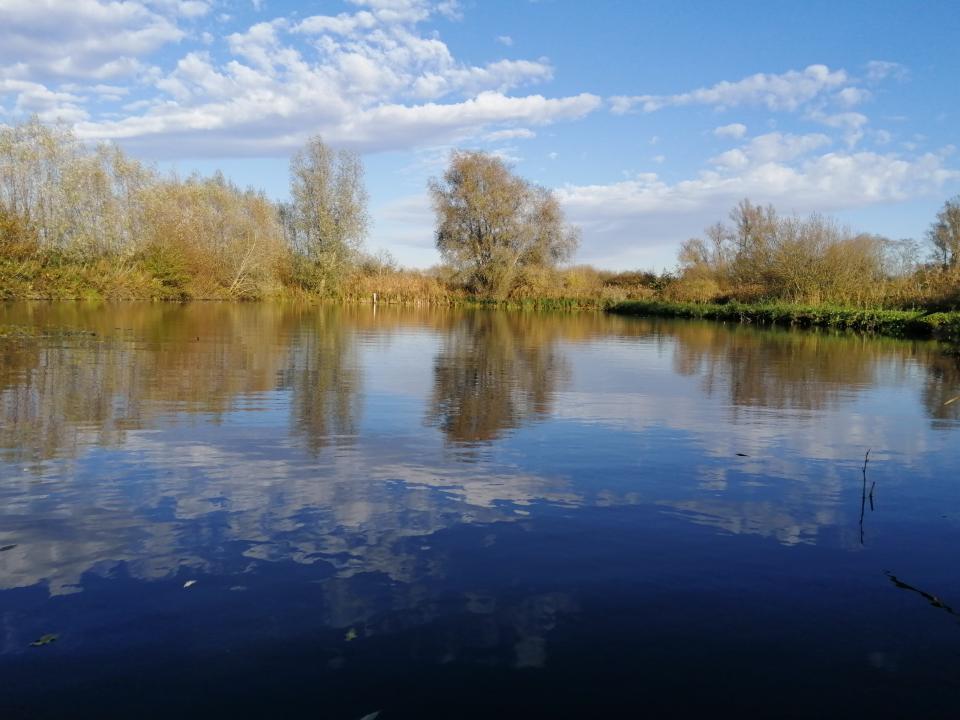 Une vue sur l'étang